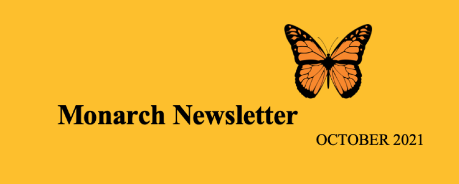 Monarch Newsletter – Out Now!
