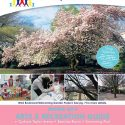 Spring Recreation Guide Online